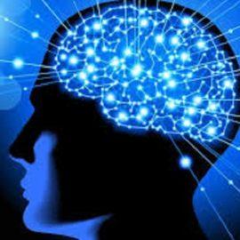 Cosa avviene nel cervello quando sperimentiamo l'Autoipnosi